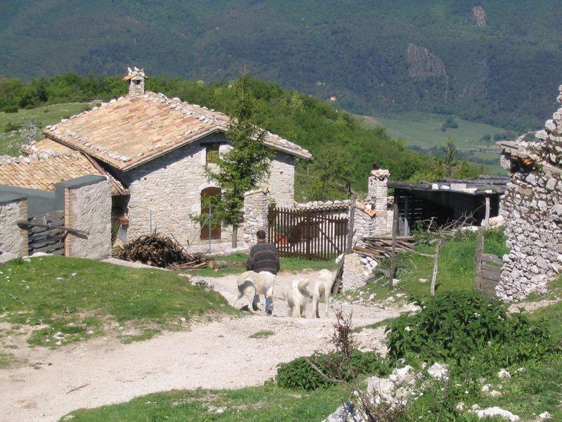 TASTE OF ITALY06 003